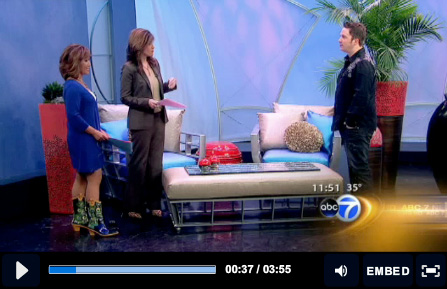 ABC7 Appearance - DreamHome Outdoors